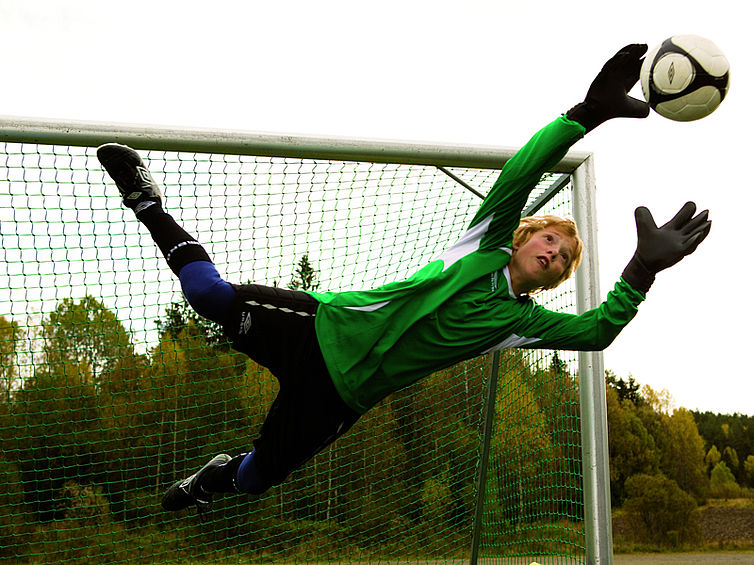The Liverpool Goalie